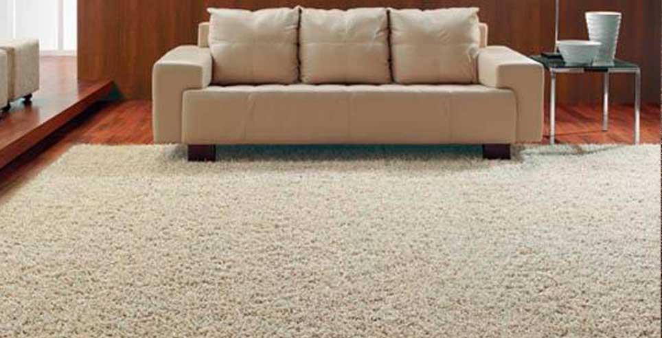 carpete-01