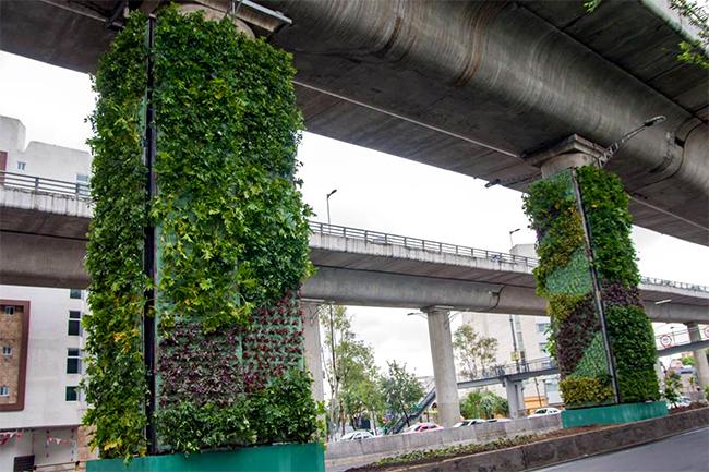 mini jardins verticais : mini jardins verticais:Cidade do México investe em jardins verticais