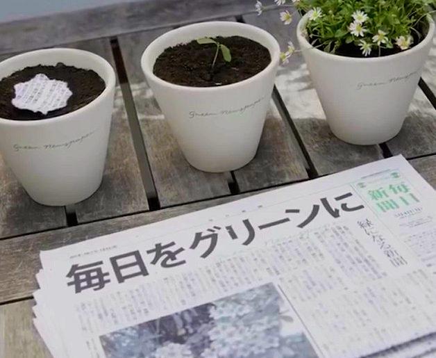 jornal-ecologico-01