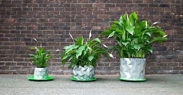 vaso-origami-growth1