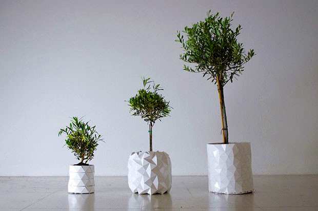 vaso-origami-growth