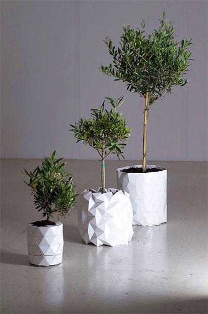 vaso-origami-growth4