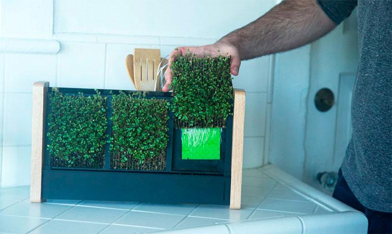 EcoQube-Frame-jardim-vertical-01