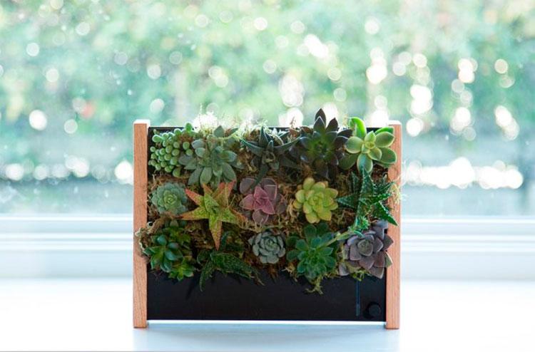 EcoQube-Frame-jardim-vertical-02