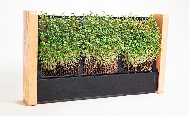 EcoQube-Frame-jardim-vertical-03