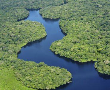 amazonia-leed