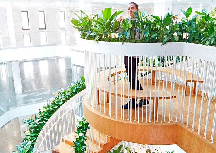 escada-viva-03