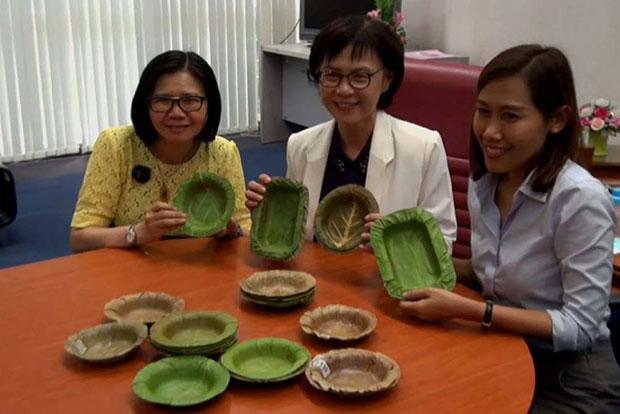 pratos-descartáveis-tailandia-01