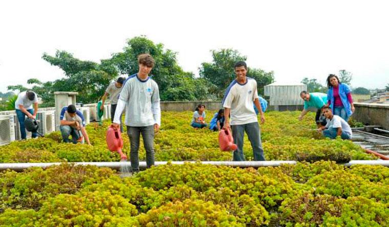 primeira-escola-sustentável-da-América-Latina-e-seus-diferenciais-01