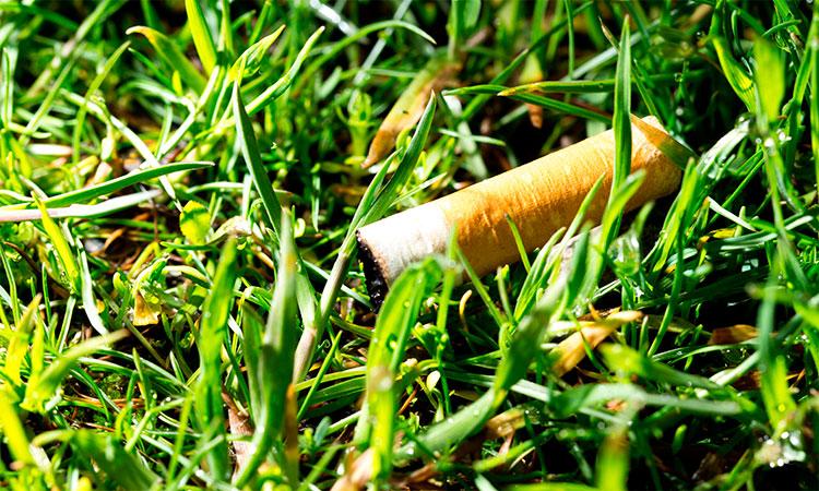 reciclagem-bituca-de-cigarro