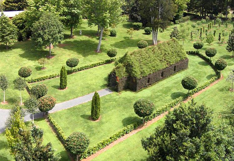 capela-de-arvore-tree-church