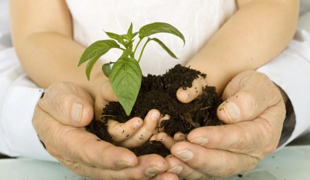 6 consejos sustentables para ahorrar y salvar el planeta
