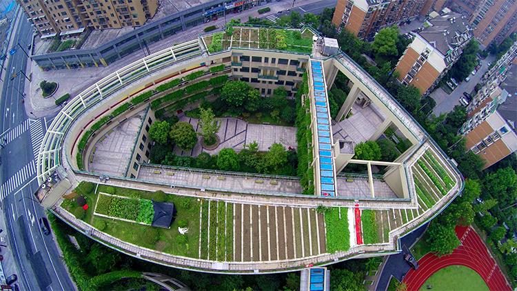 horta-gigante-escola-china-3