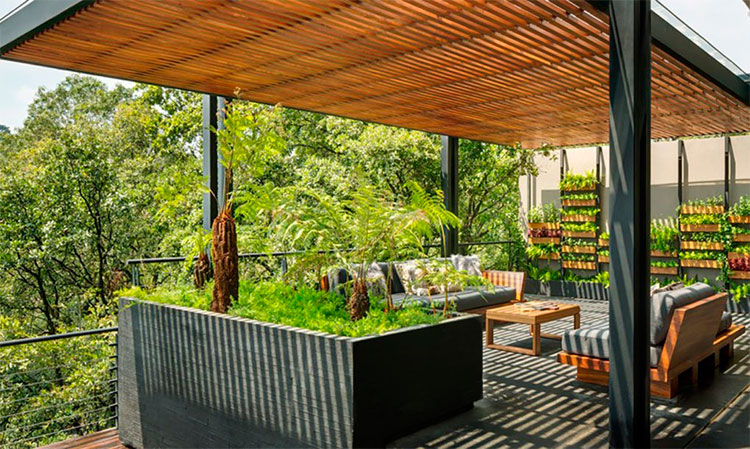 casa-mexico-convida-natureza-para-entrar-nos-ambientes-02