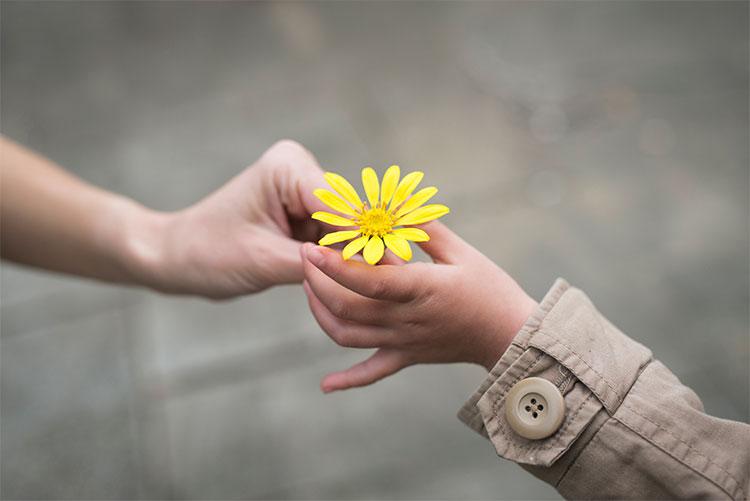 gentileza-gera-gentileza