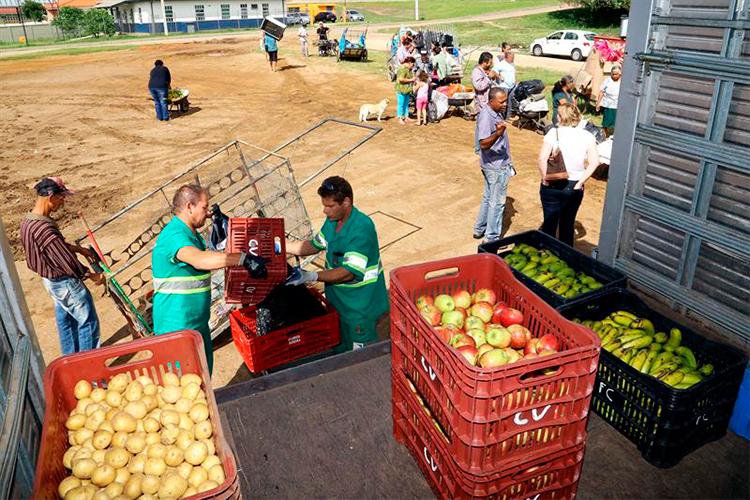 Lixo reciclável pode ser trocado por alimentos