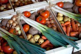Frutas feias preservam sabor e valor nutritivo
