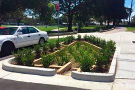 Jardins de chuva diminuem a poluição da água em Sydney