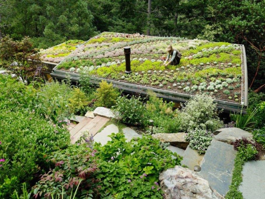 Refúgio verde se camufla em meio à natureza
