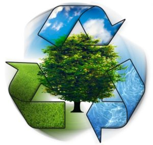 Reciclagem ainda é um desafio para brasileiro
