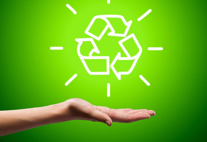 Aproveite o novo ano para adotar um estilo de vida mais sustentável. Veja dicas!